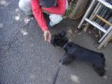 2009-5-18youchien5.jpg
