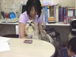 2009-6-26youchien1.jpg