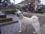 2009-9-4youchien7.jpg
