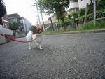 itakura266_20090830221142.jpg