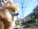 itakura74.jpg