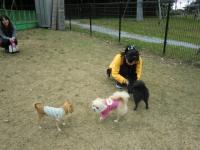 2010-11-11kino3.jpg