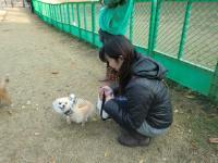 2010-11-18kino3.jpg
