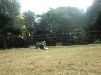 2010-11-4renntu4.jpg