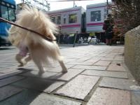 2010-2-23hoikuen2.jpg