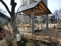 2010-2-23hoikuen4.jpg