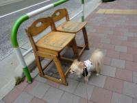 2010-6-18kino13.jpg