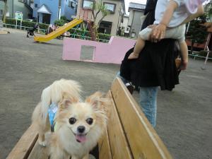2010-6-25kino1.jpg