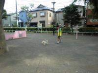 2010-6-25kino3.jpg