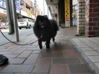 2010-6-7jiro11.jpg