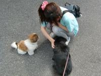 2010-6-7jiro16.jpg
