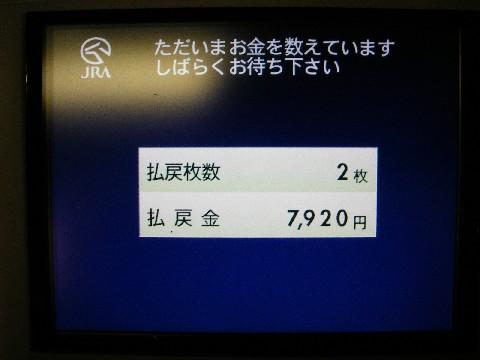 MGP5452.jpg
