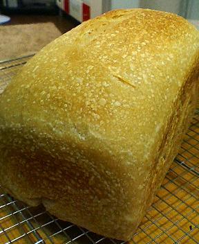 玄米酵母の玄米パン