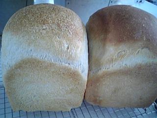 食パン食べ比べ