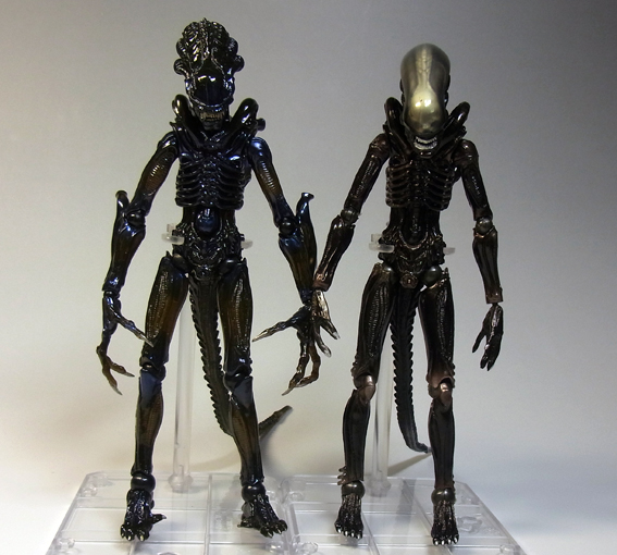 alienw19.jpg