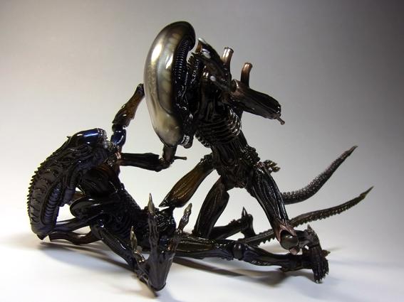 alienw33.jpg