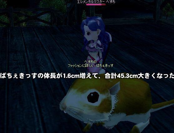 mabinogi_2009_06_19_008.jpg