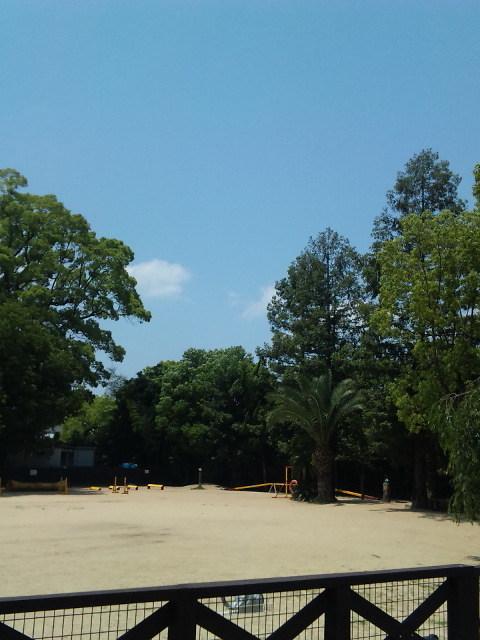 takarazuka-100612-3