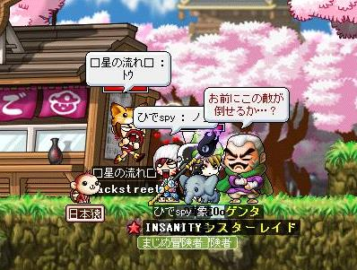 Mapleo0516.jpg