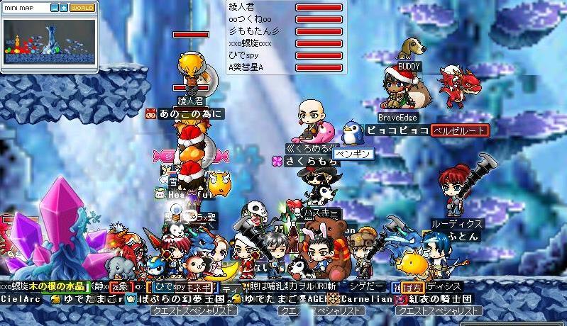 gMaple0098.jpg