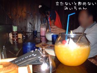 461_1.jpg
