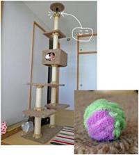 タワー&ボール