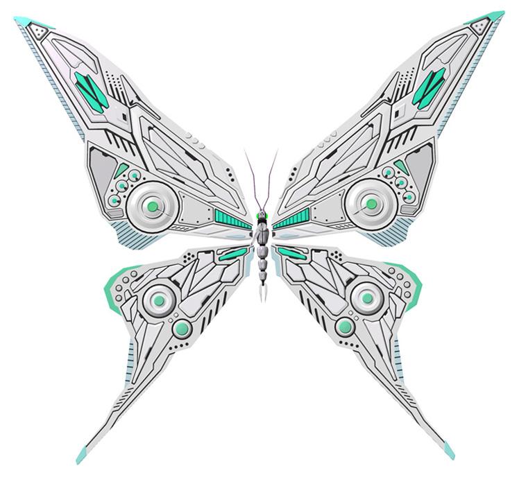 03_butterfly.jpg