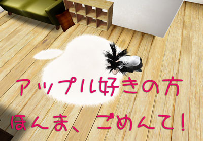 Snap0529_006.jpg
