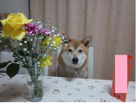卒業を祝う会のお花