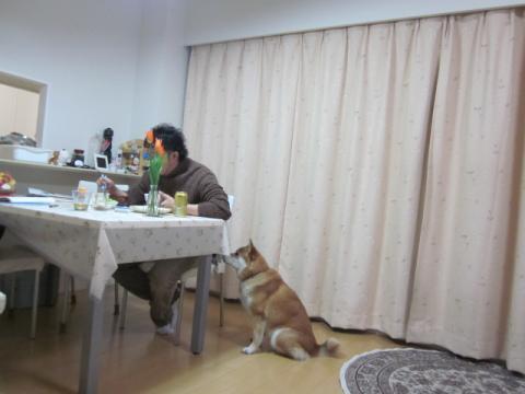 2011_0306_230306-IMG_1062.jpg