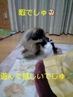 090125_1829~0001-0001
