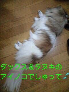 090504_0901~0001-0001