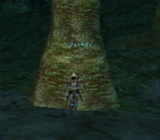 木に寄生してた