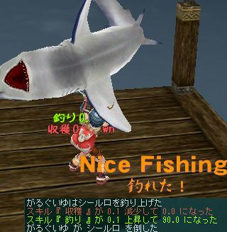 そして釣りー