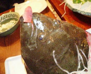 ヒラメ刺身1