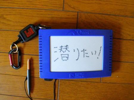 20070313210501.jpg