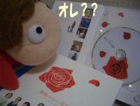 薔薇のない花屋のDVD