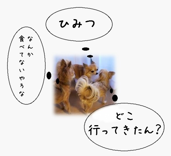 2011101208.jpg