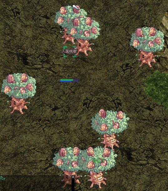 桃木の群生地