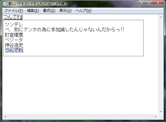 20090223-z.jpg