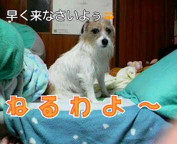 image0002_20080112184431.jpg