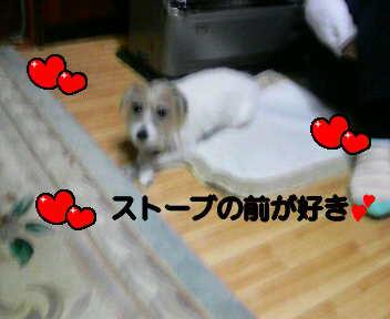 image0005.jpg