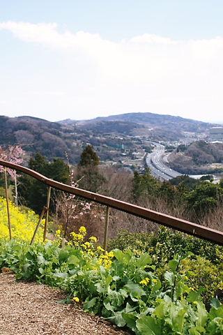 東名高速を臨む