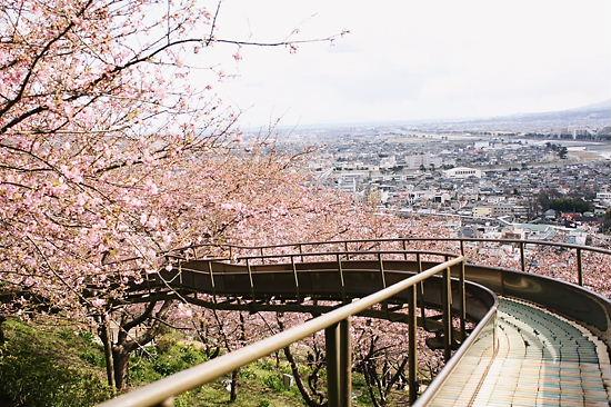 すべり台の上からの風景①