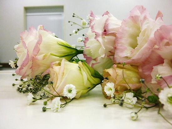 1/25 coco撮影 花の横顔