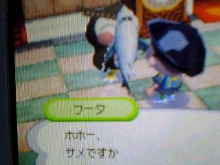 oimori_same_02.jpg