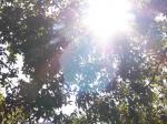 日比谷の空