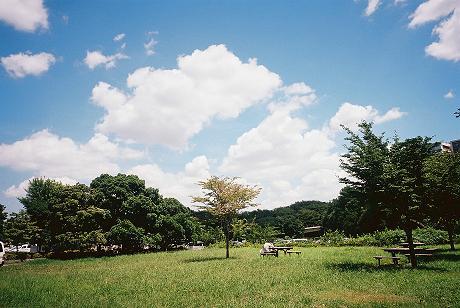 hikako9.jpg