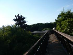 大阪・万博記念公園6