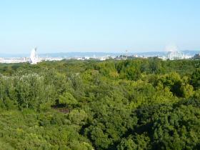 大阪・万博記念公園8